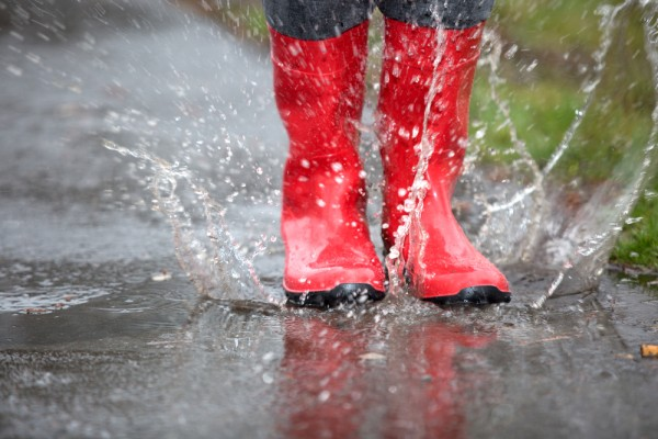 An In Depth Review of the Best Wellington Boots of 2021