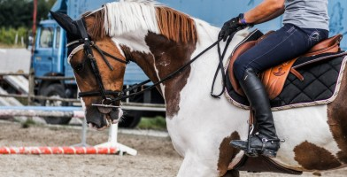 An In Depth Review of the Best Riding Boots of 2018