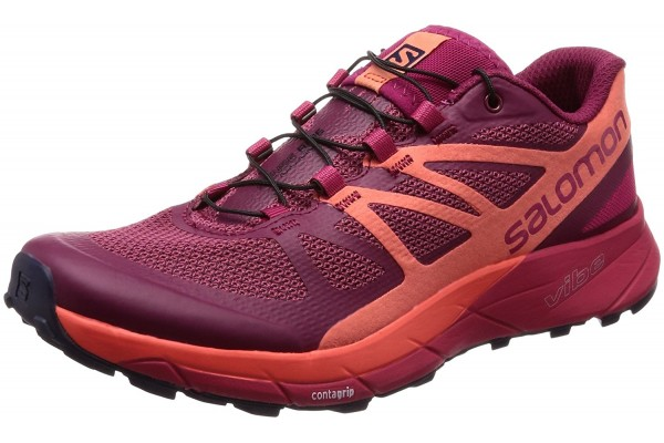 An in depth review of the Salomon Sense Ride in 2018