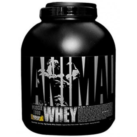 Universal Nutrition whey supplement by Animal