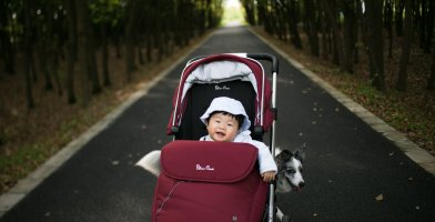 a baby in a jogging stroller on the road