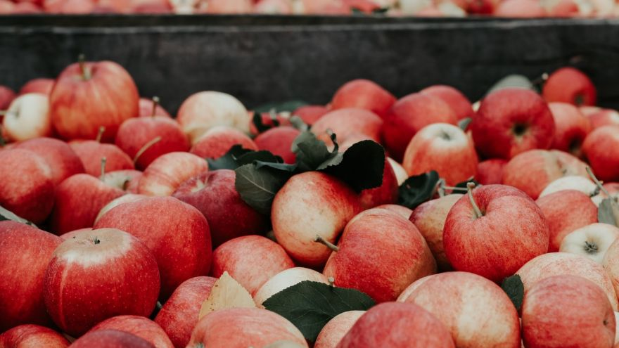 How to do an Apple Cider Vinegar Foot Soak in 2019 | WalkJogRun