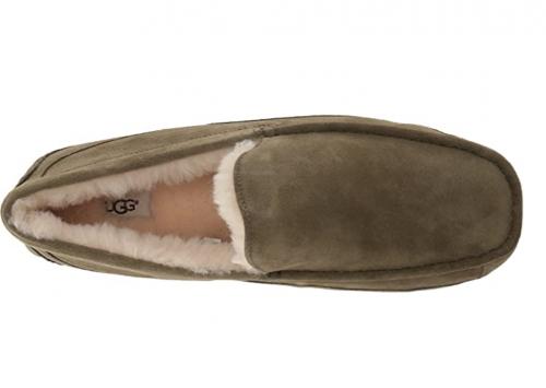 UGG Men's Ascot house shoe