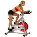 Sunny Health & Fitness Pro stationary bike