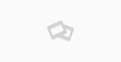 Best Waist Trimmer Belts Reviewed